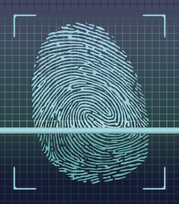 Fingerprint scanner, identification system.